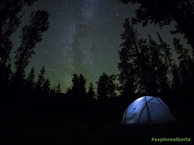 Night Camping Wallpaper