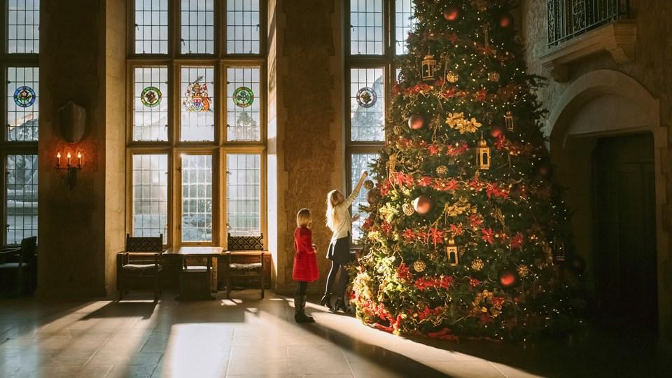2019 Weiße Weihnachten.Weiße Weihnachten Alberta Canada