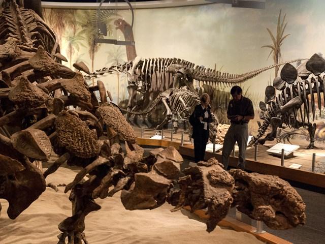 museos para niños en Canadá