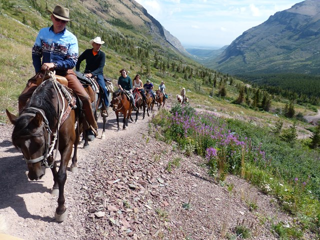 Riding with the Trail Riders of the Canadian Rockies | Alberta Canada